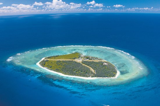 Lady Elliot Island Day Tour