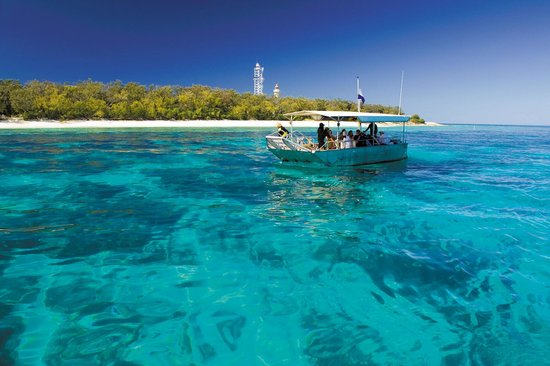 Lady Elliot Island Day Tour: Glass Bottom Boat/Snorkel Tour (Included in price)