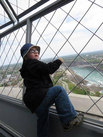 Skylon Tower: Great view.