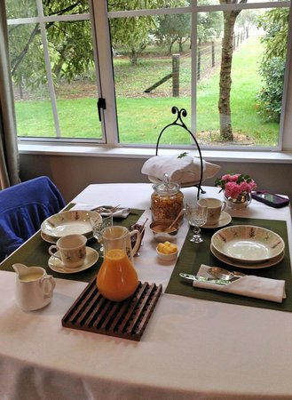 Hillsfield House Bed and Breakfast Marlborough: Breakfast in the room