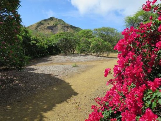 Koko Crater Botanical Garden: 植物園の様子