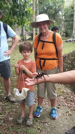 Black Rock Lodge : Saw this at Tikal