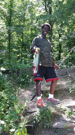 Silver Springs State Park: Big Bass
