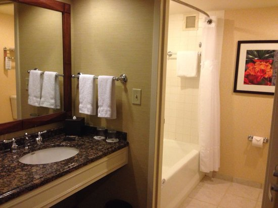 San Antonio Marriott Rivercenter: Bathroom