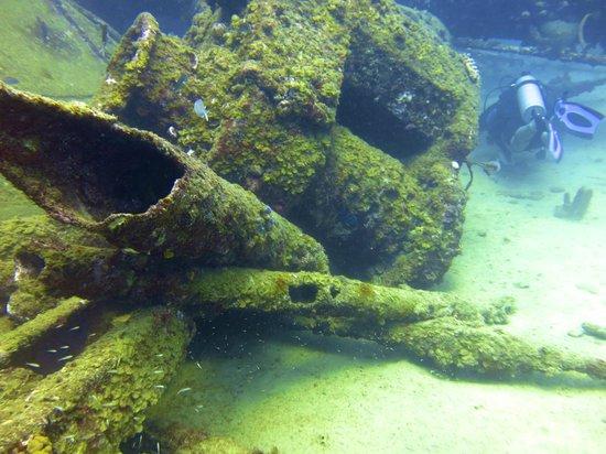 Mermaid Dive Center : Ocean Junk Yard