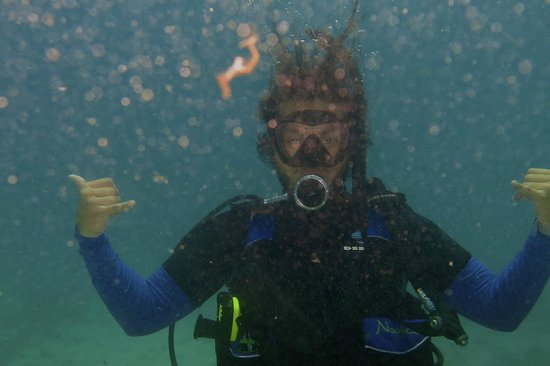 Mermaid Dive Center : The Dive Man