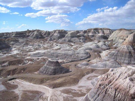 Blue Mesa Landscape