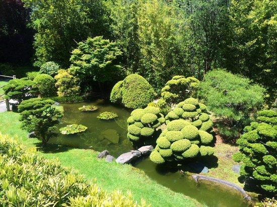 Japanese Tea Garden: Beautiful well kept garden