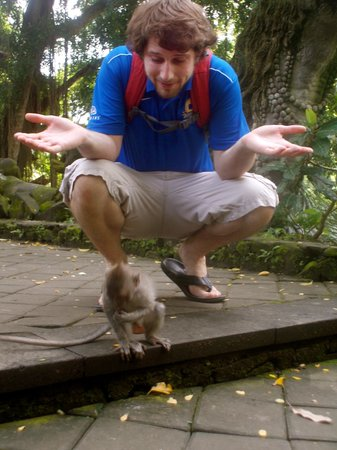 Bhanuswari Resort & Spa: Monkey Forest!