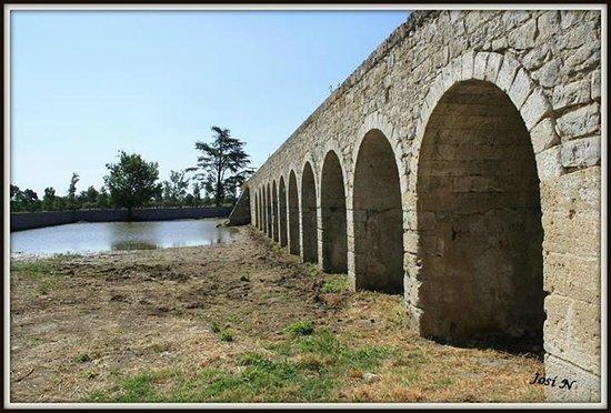 Camargue Sauvage safari 4x4 : un lieu historique