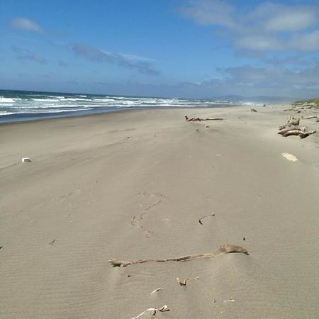 Bullards Beach State Park: End of Beach Trail from Campground Loop B. Like your own personal beach!