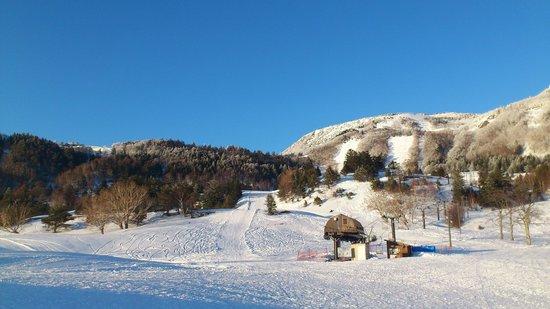 Redwood Inn: 宿の前のスキー場です。
