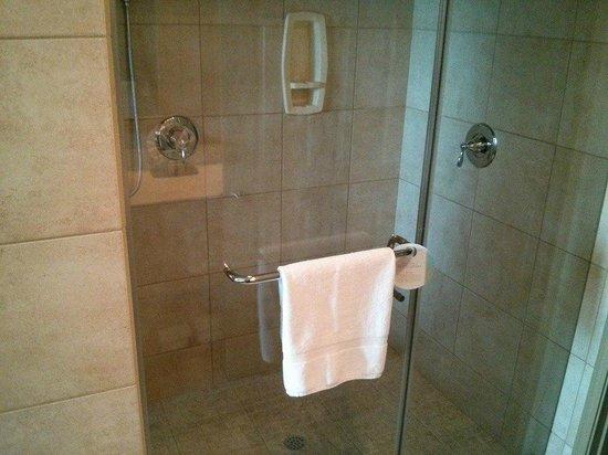 "Bluegreen Club 36: ""A"" suite shower"