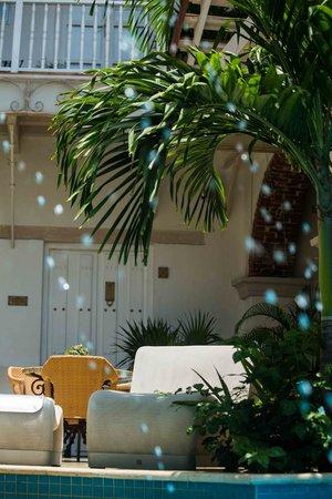 Hotel Boutique Don Pepe: Piscina