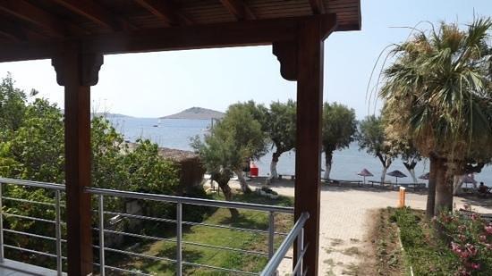 Yılmaz Hotel: sea view
