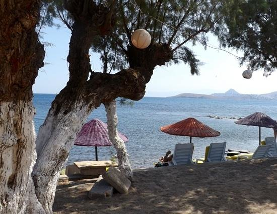 Yilmaz Hotel: lovely seating by beach