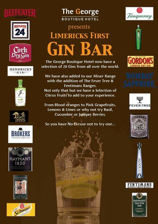 The George Limerick: first gin Bar in limerick city
