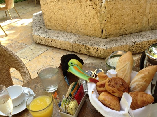 Sofitel Legend Santa Clara : This little fella decided to join us for breakfast