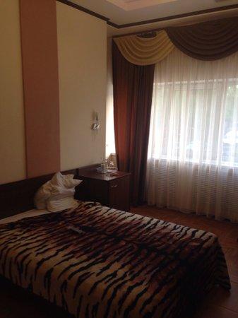 Gryozy Hotel : Номер стандарт