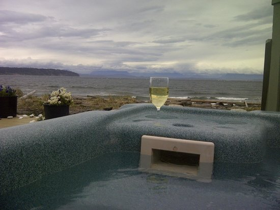 Seaside Cottage: View from the hot tub