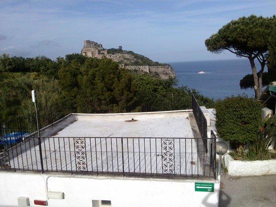 Hotel Parco Cartaromana: panorama dall'hotel