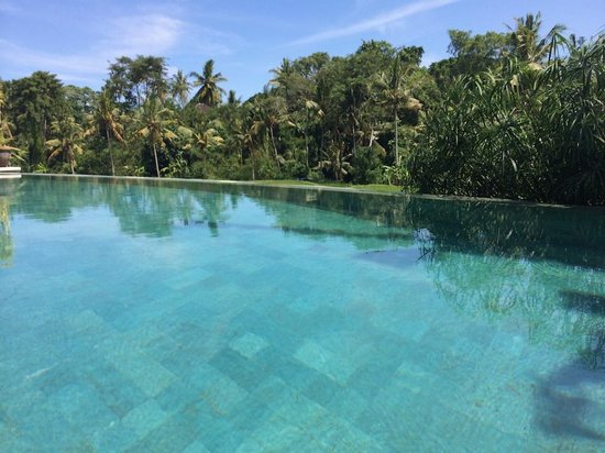 Bamboo Village Le Sabot Ubud: Infinity-style pool overlooking rice fields and over to the trees