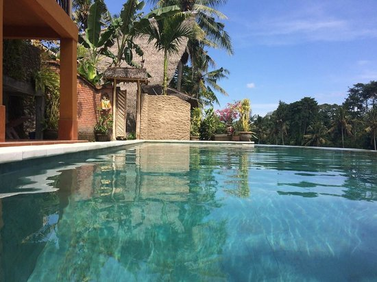 Bamboo Village Le Sabot Ubud: That beautiful pool again!