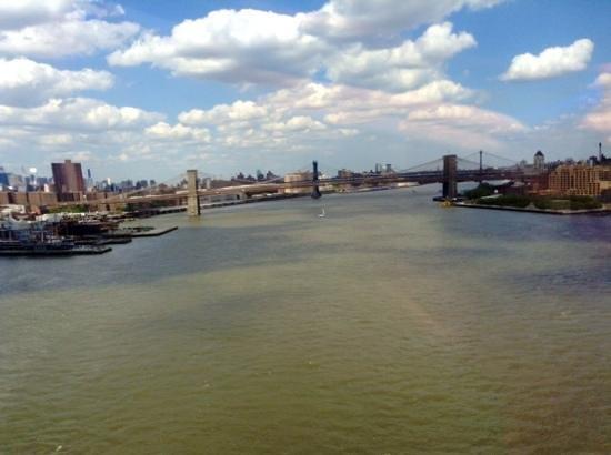Zip Aviation - Helicopter Tours & Charters : brooklin bridge