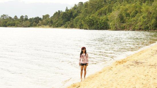 Danau Poso: Pasir putih pepohonan hijau