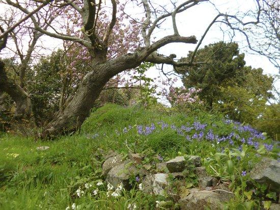 La Sablonnerie: The garden