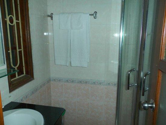 โรงแรมฮานอยบ่าวแค๊ง: 右手奥がシャワー室、左手が洗面、写真に写っていない右手がトイレ