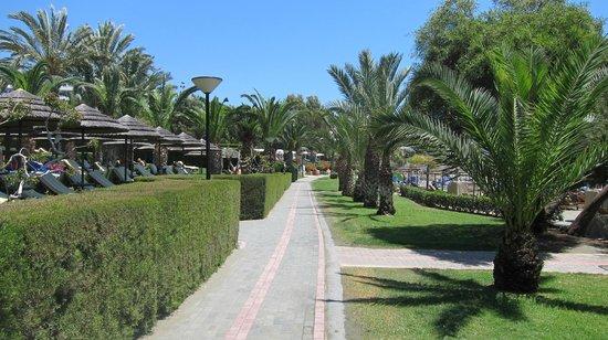 Mediterranean Beach Hotel : Promenade outside the hotel
