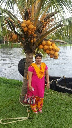 Kumarakom Lake Resort: Beauty of kumarakom lake.....