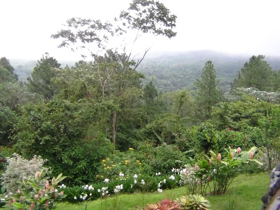 Arenal Observatory Lodge & Spa: View on cloudy day from room