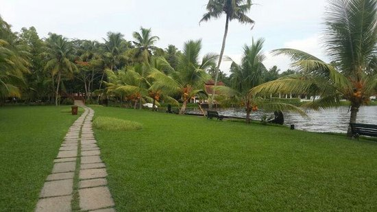 Kumarakom Lake Resort: Beautiful alone street. ..