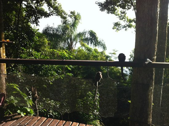 Pousada Lagamar: Terrasse