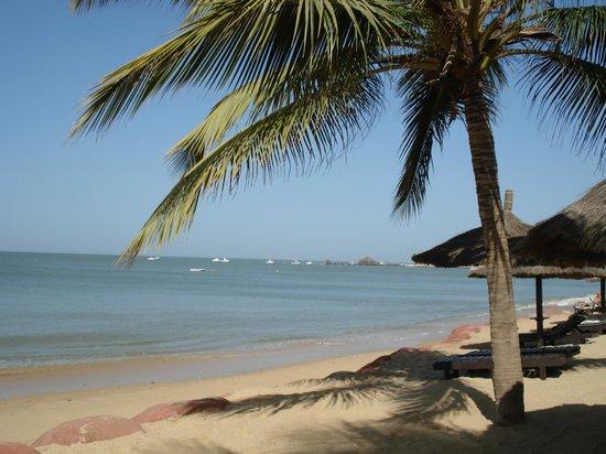Hotel Neptune : Vue de la plage
