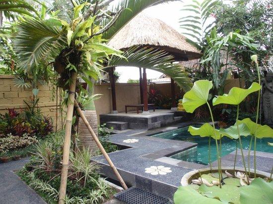 Lily Lane Villas: Villa 1 pool & bale