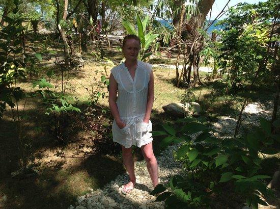 Jungle Beach Resort : Территория отеля