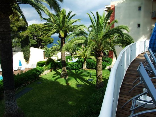 Hotel Riu Bonanza Park : Garden