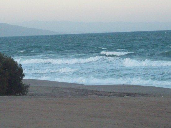 Hotel Best Oasis Tropical: Playa