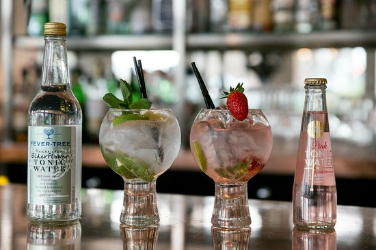 Waterhead Hotel: Extensive Gin & Tonic menu in the bar