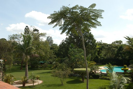 House of Waine: Beautiful view of garden and pool from our rooms