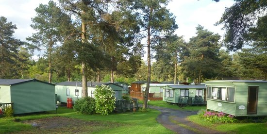 Lowther Holiday Park: View from caravan