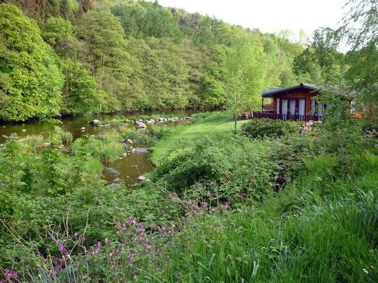 Lowther Holiday Park: Prime spot - Lilac Lodge