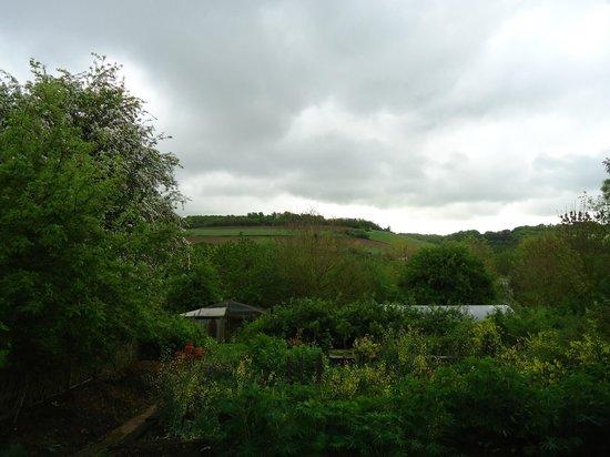 La Maison du Vert : The view from my window