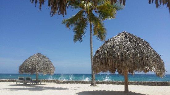 Viva Wyndham Dominicus Beach: una parte della spiaggia