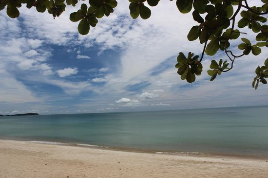 Vana Belle, A Luxury Collection Resort, Koh Samui: From a lounger!