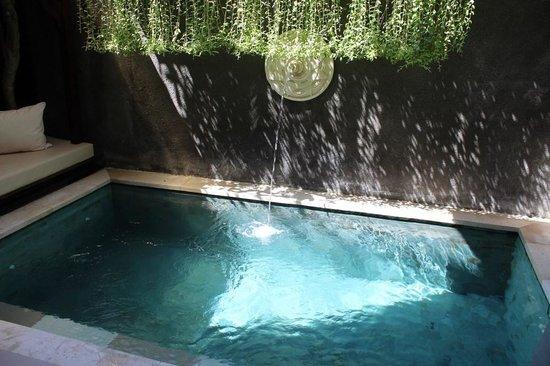 Tanadewa Luxury Villas & Spa: Plunge Pool