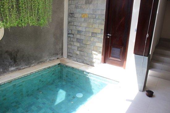 Tanadewa Luxury Villas & Spa: Pool